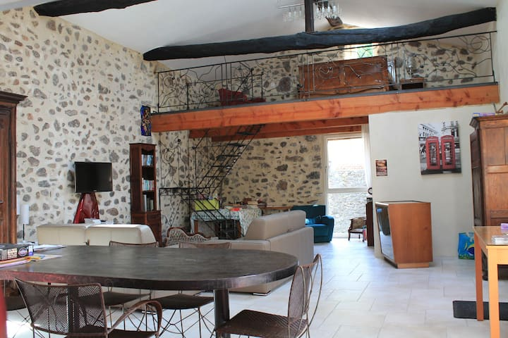 Spacious Loft style apartment - Lasalle - Appartement