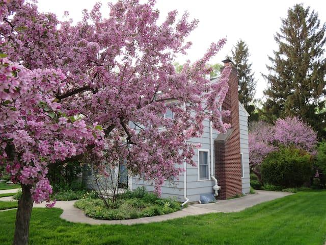 Garden home 1.7 miles from Stadium - Avail Grad wk - Ann Arbor - House