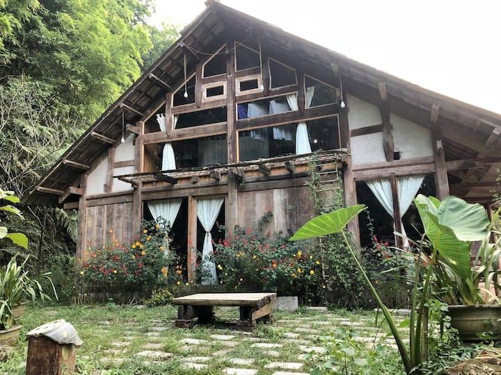 Phơri's House - BAMBOO FOREST