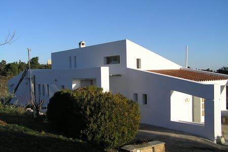 Aeolos Villa - Mikrochori - Casa de camp