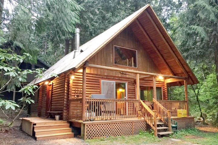 #17 - A Rustic Family Cabin with Modern Features!