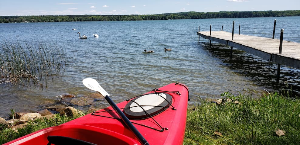 Lakefront Cedar Haven-Canoe, Kayak, Floating Mat