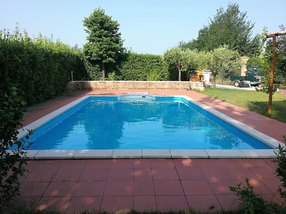 Pool & Garten / Pool & Garden