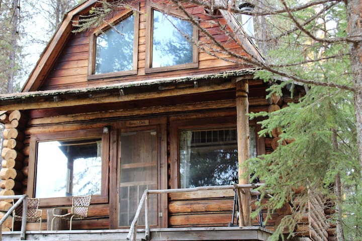 """Bears Den"" cozy cabin nestled in the pines."