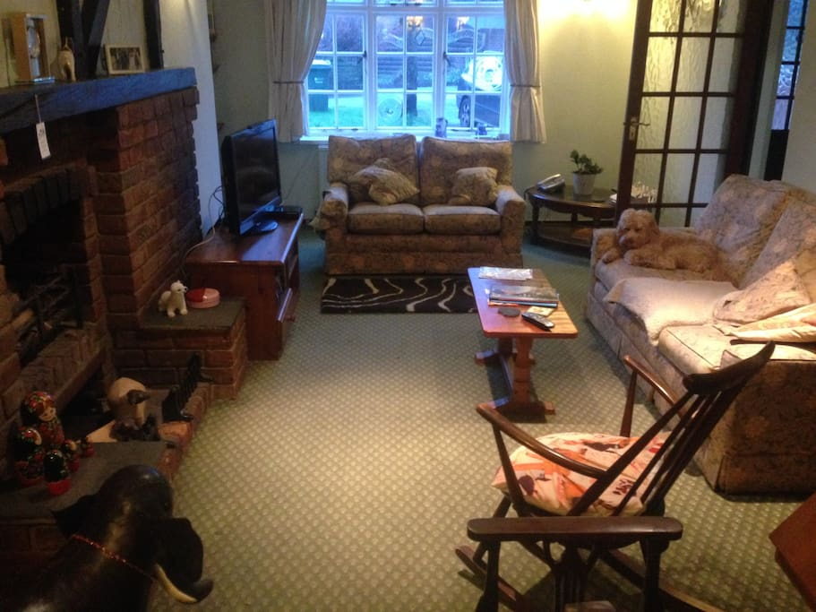 Cosy sitting room, we have a calm small dog