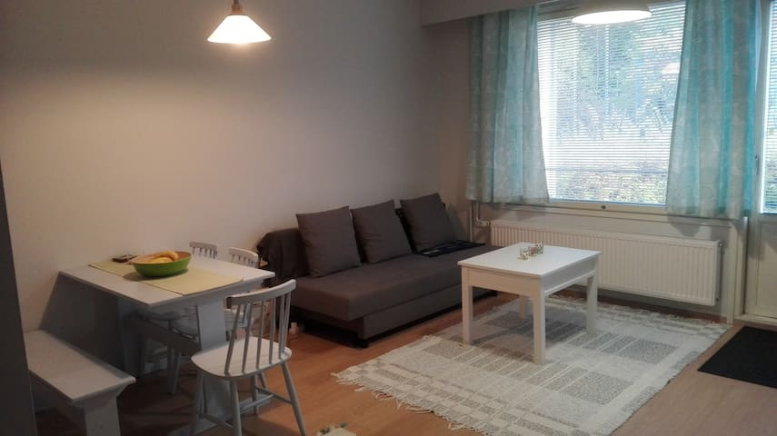Nice and quiet apartment outside of center of Tre