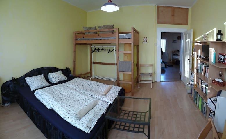 A quiet location not far from the town centre - Poděbrady - Appartement