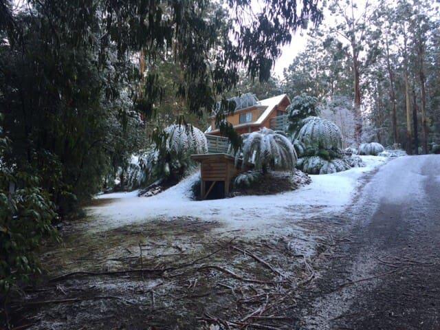 Tanjil Family Mountain Cabin