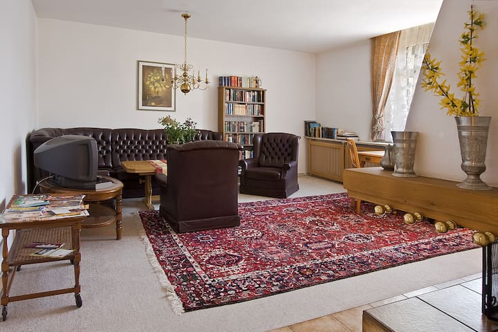 3-room apartment in Blasewitz - Dresden - Leilighet