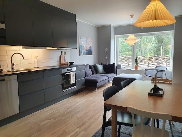Nyproducerad stilren lägenhet i Tegefjäll, Åre