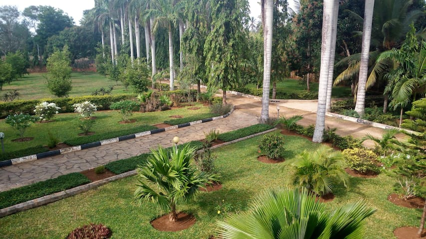 extensive mature garden within property