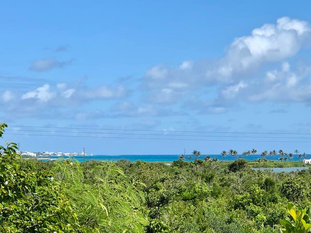 Great West End location - walk to 3 beaches