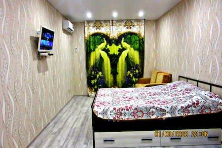 Квартира на Владимирской 55В