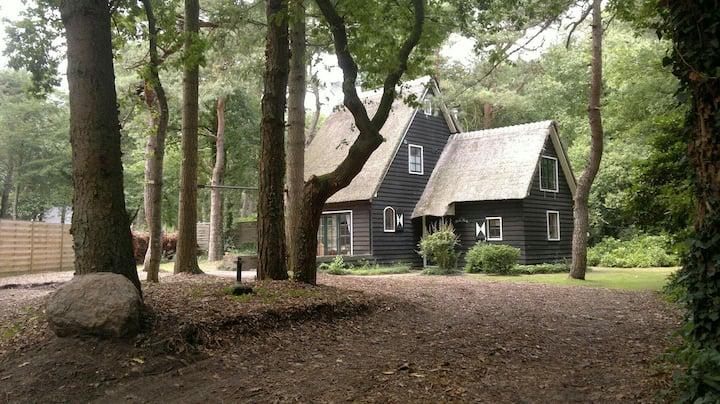 Rietgedekt vakantiehuis (8p) in de bossen van Norg