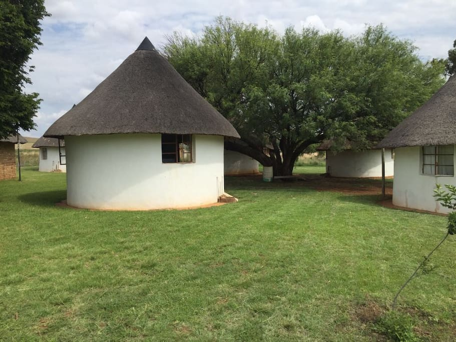 This is what each of the huts looks like from the outside.  There are 8 huts which can accommodate 26 guests.