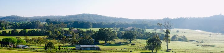 Meander Welsh Black Cattle Farm and Accommodation