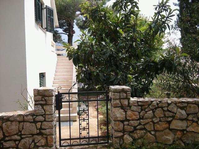 IslandHouse,2BD,terrace,pines&peace - Island Pašman - Haus