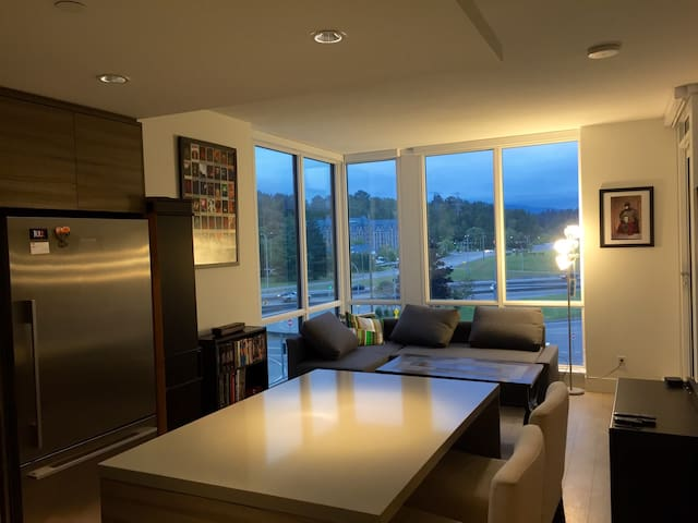 Full Aprt on the footsteps of a winter wonderland! - North Vancouver - Apartment