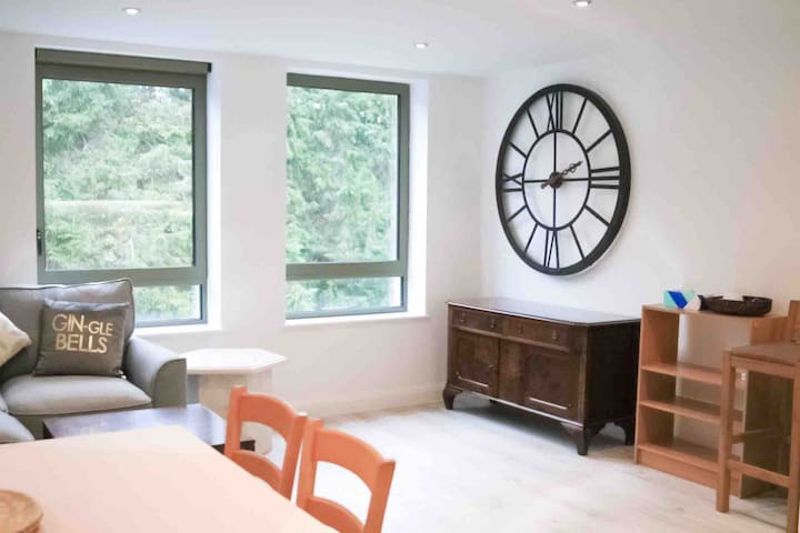 FANTASTIC CLEAN NEW FLAT IN CENTRE WITH PARKING