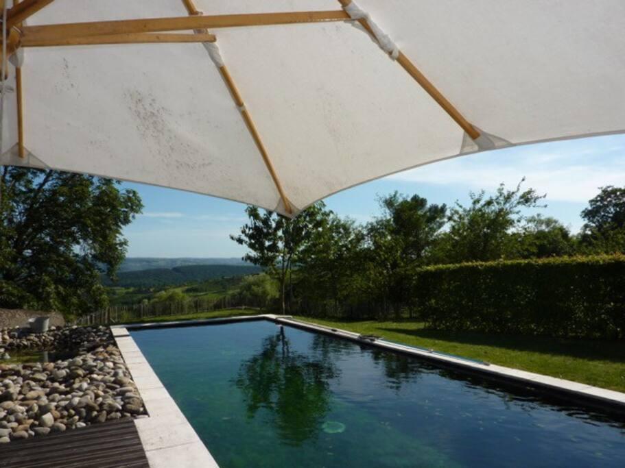 huge private natural pool