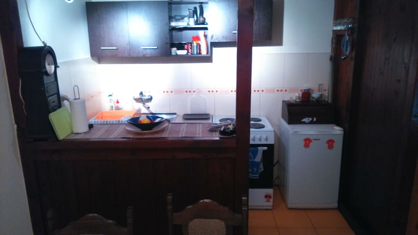 Exit Festival HOUSE APPARTMENTS ROOMS 15€ - Petrovaradin - Huis