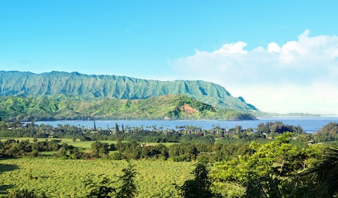 New!! Hanalei Bay Penthouse with Ocean Views