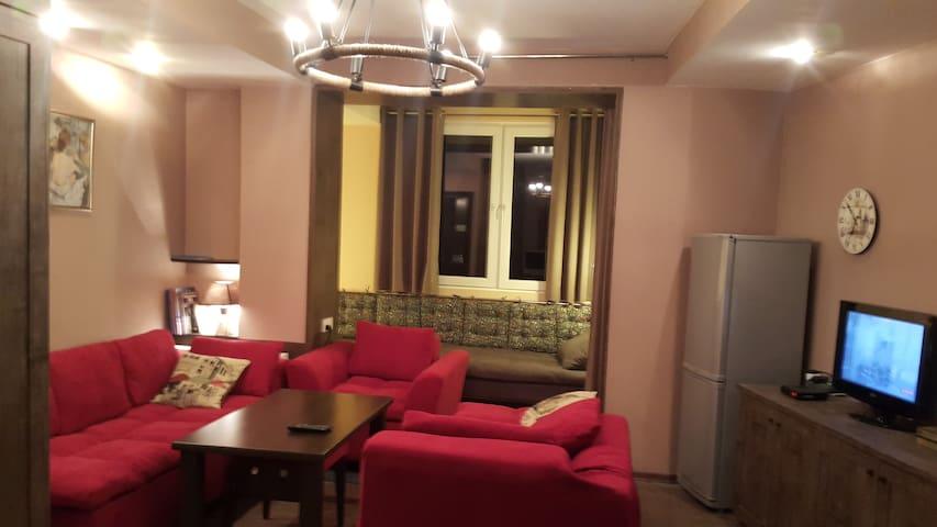 Gudauri Deluxe Apartment - Gudauri - Byt se službami (podobně jako v hotelu)