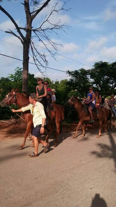 Paseo a caballo con guias de la casa por el Parque nacional