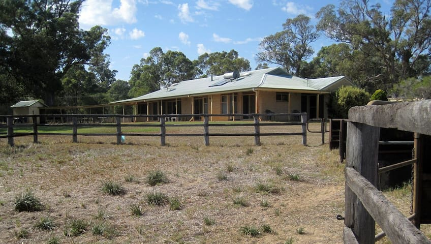 The Farm House .  Watch the Horses in the Paddocks