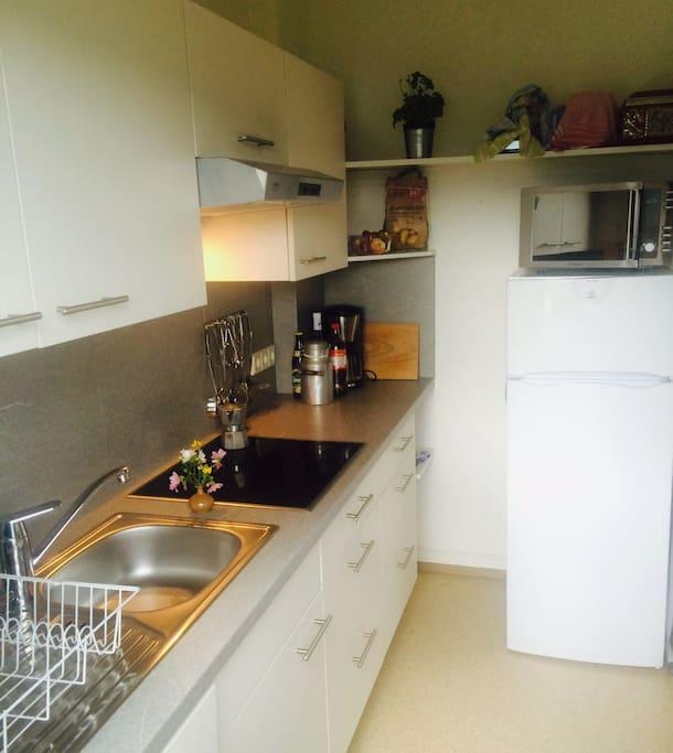 Die frisch renovierte Küche