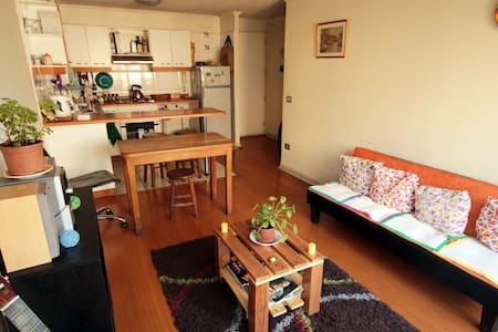Habitación con baño privado en Santiago Centro - Santiago