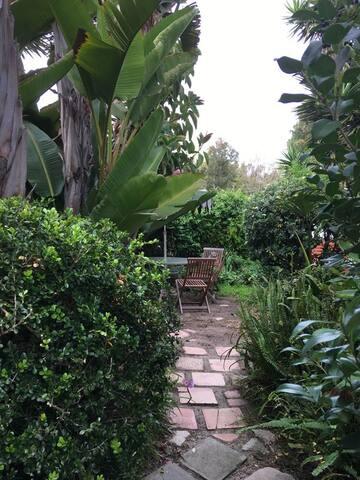 Walkway into private garden oasis