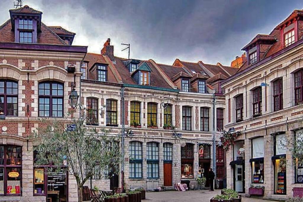 Vieux Lille 5 a pied -Boutiques -Restaurants -Balades