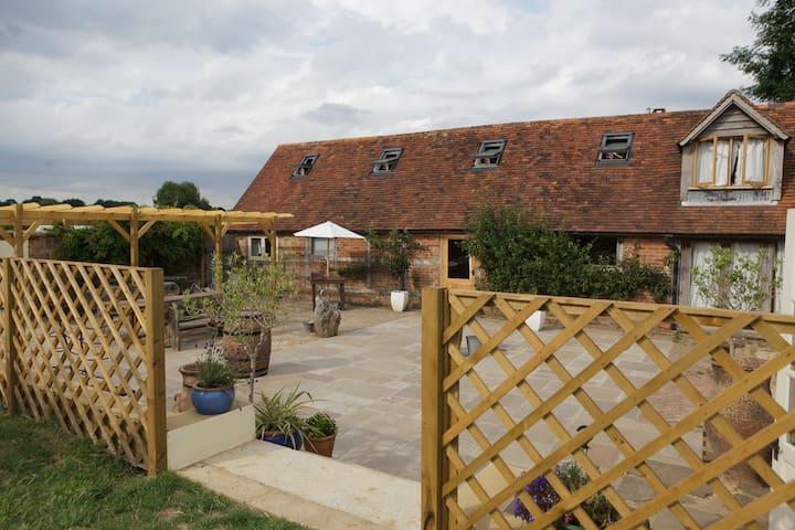 View of the courtyard garden.