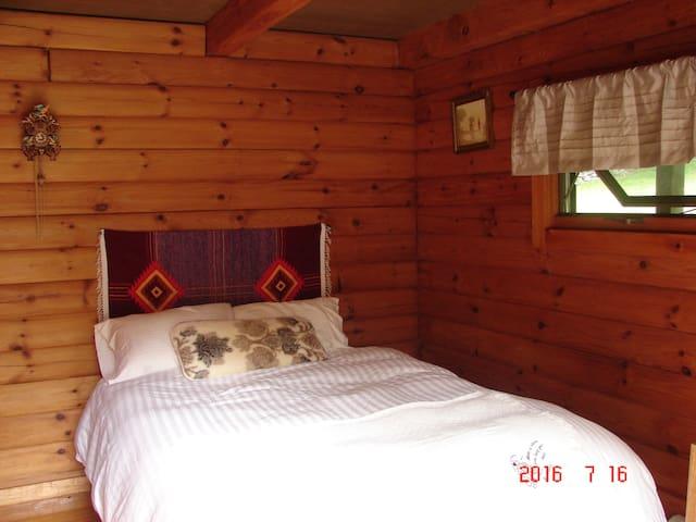 Cozy Log Cabin - Fleischmanns