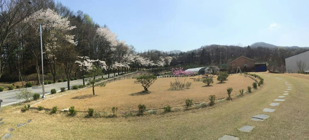 Garden House near Ski Resorts독채 - Yongin-si