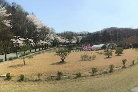 Garden House near Ski Resorts독채 - Yongin-si - Villa