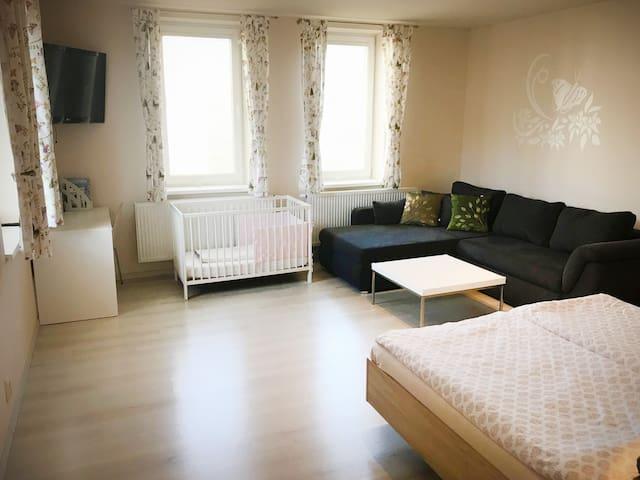 Apartment 501 Važec