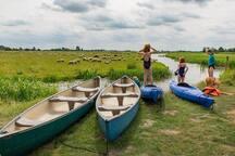Kano en kayak steiger