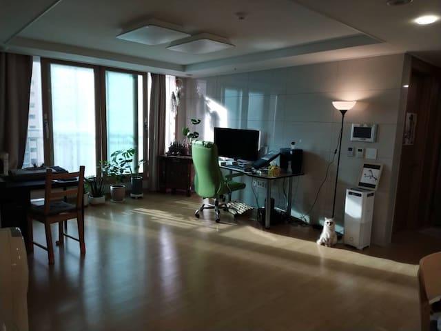 여행하는 마음으로 방문할 수 있는 예술인의 집:) Traveler's Home.