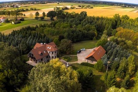 Villa  Żelazowa Wola