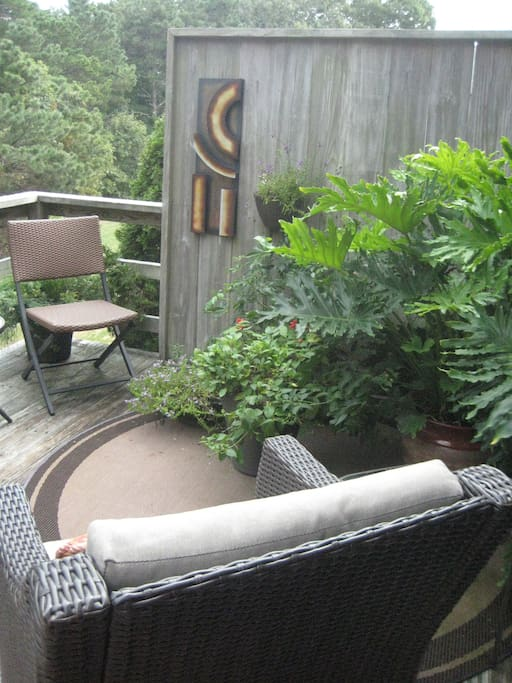 Furnished deck with a container garden adds an additional living space.