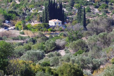 In the heart of nature 10' from Pythagorio, Samos