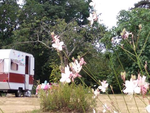 Vintage caravan from Arlette