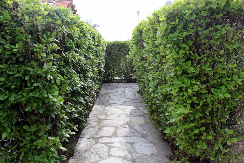 The pathway to your home