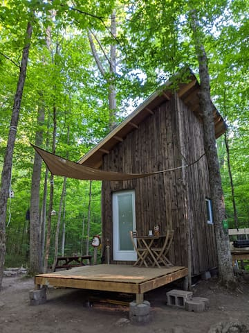 Private all season off-grid cabin in the woods