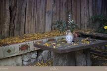 Autumn at ODU House - Verőce