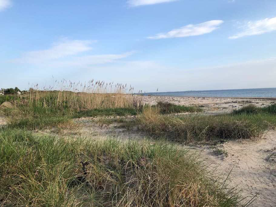 Fina stranden i Vejbystrandsområdet. Tar ca 5-10 minuter att cykla dit.
