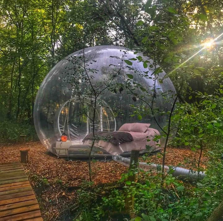 Star Gazing Bubble Camp