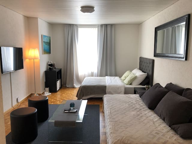 Cozy 2 room (1BR) Apartment in Zurich City